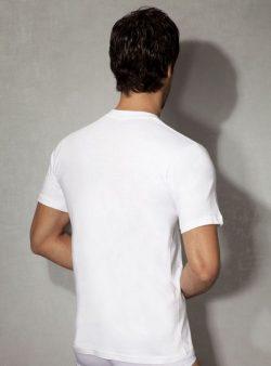 Doreanse, Pamuklu Erkek T-shirt 2505 arka