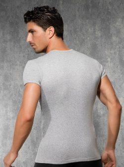 Doreanse, Pamuklu Slim Fit Erkek T-shirt 2545 arka