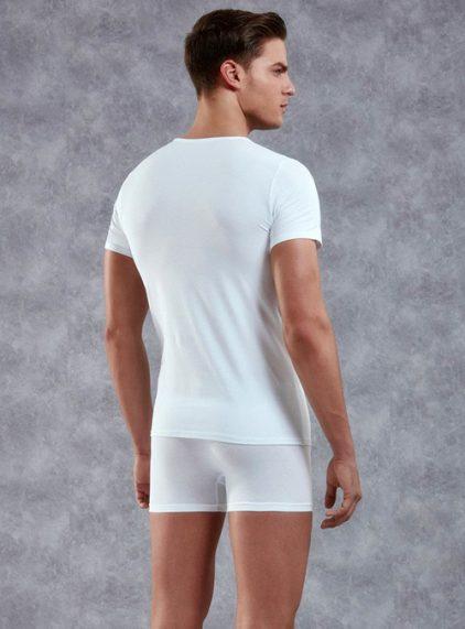 Doreanse V Yaka Erkek T-shirt 2855 arka