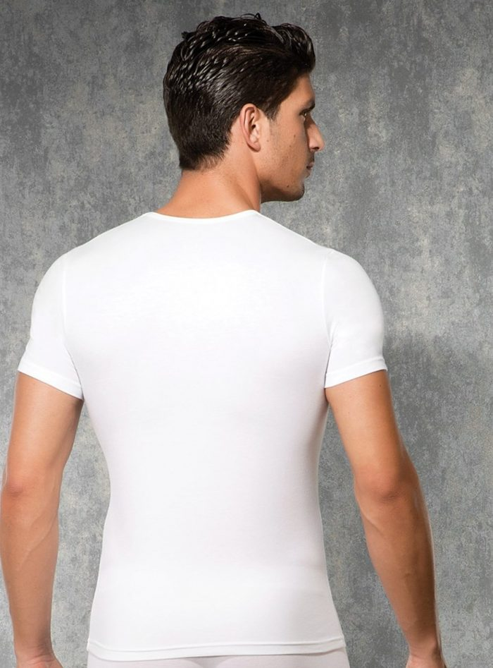 Doreanse V Yakalı Erkek Termal T-shirt 2885 arka